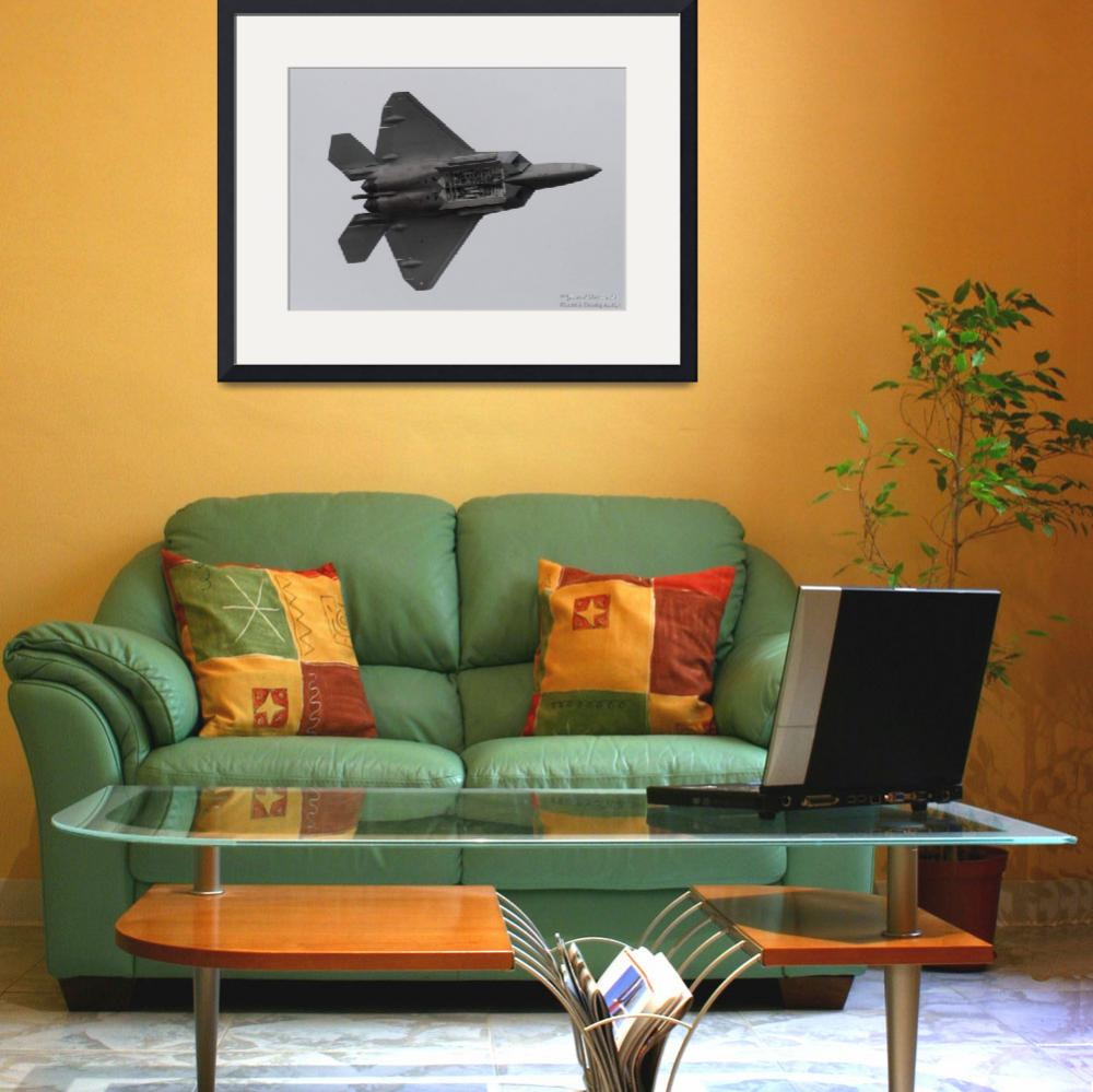"""""""F22 Fly by""""  (2010) by FossilsPhotos"""