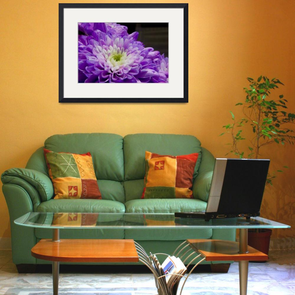 """""""Purple Flower&quot  (2008) by Simongrenfell"""