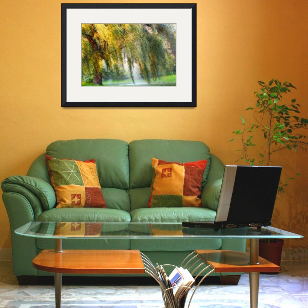 """Weeping Willow Tree Meditation Wall Art Print&quot  (2008) by PhotographsByCarolFAustin"