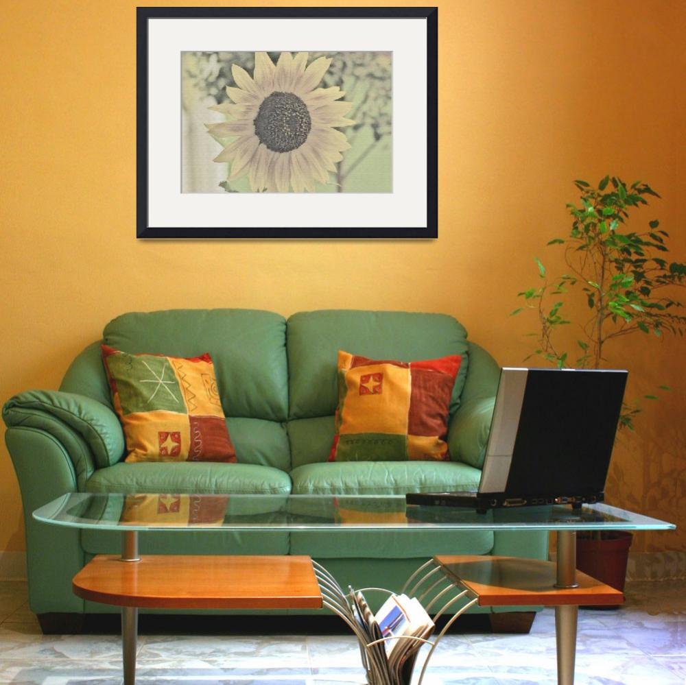 """""""Color Sketch of Sunflower&quot  by Mac"""