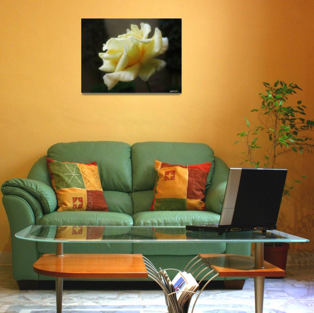 """""""My First Yellow Rose - The Second Morning 1&quot  (2010) by ChristopherInMexico"""