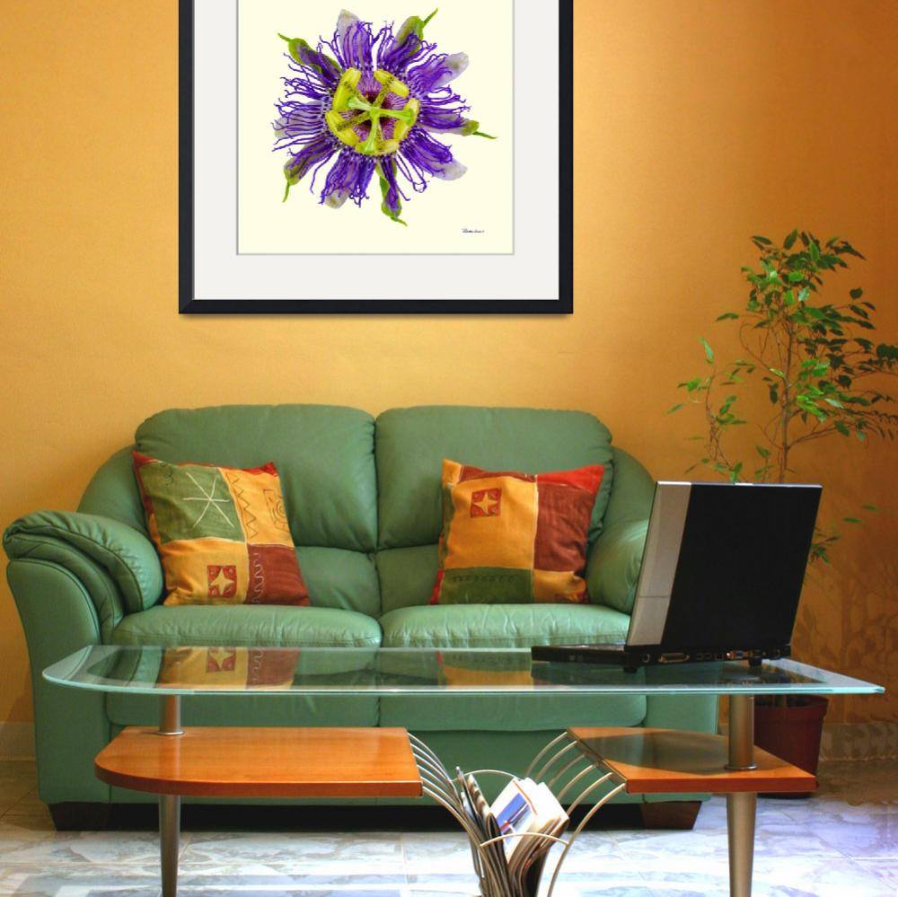 """""""Yellow Green and Violet Passion Flower 50674Y&quot  (2018) by Ricardos"""