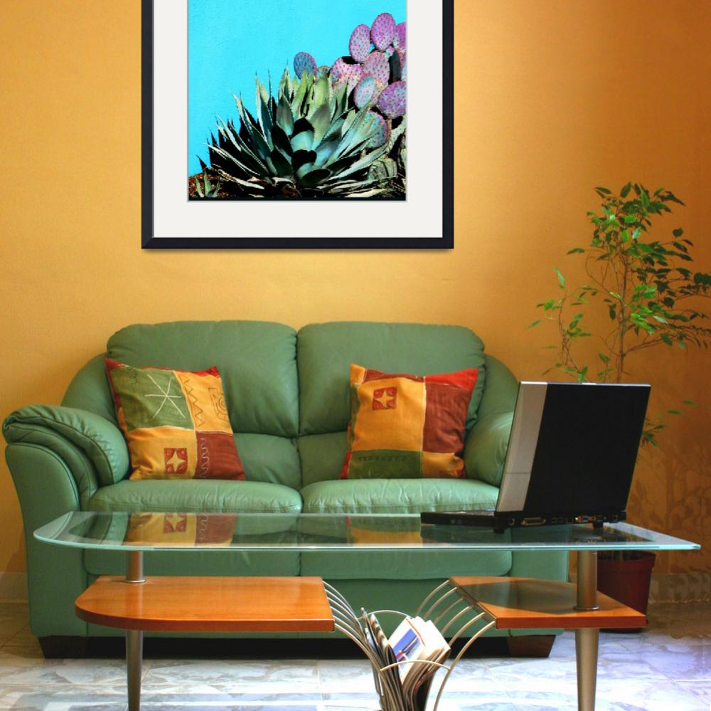 """""""Agave and Prickly Pear on Turquiose Wall P1030484&quot  (2016) by almarphotography"""