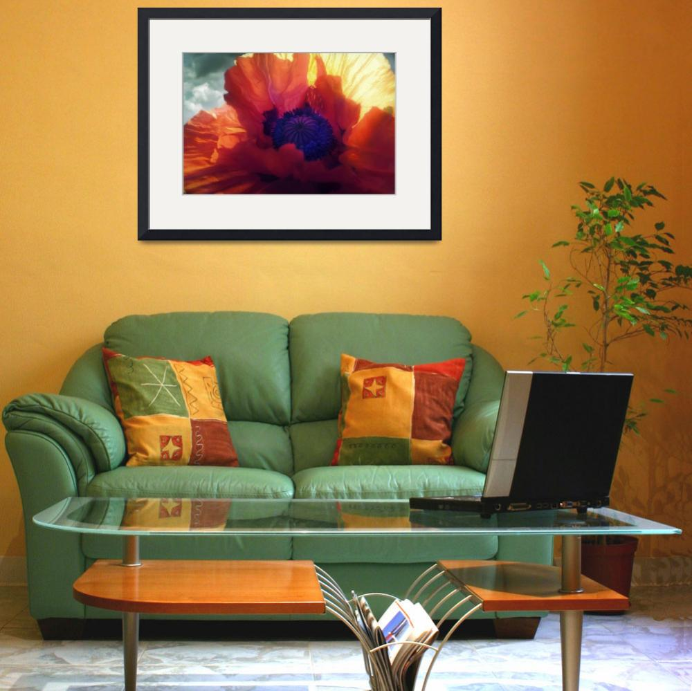 """""""Poppy Flames&quot  (2011) by pixelrev"""