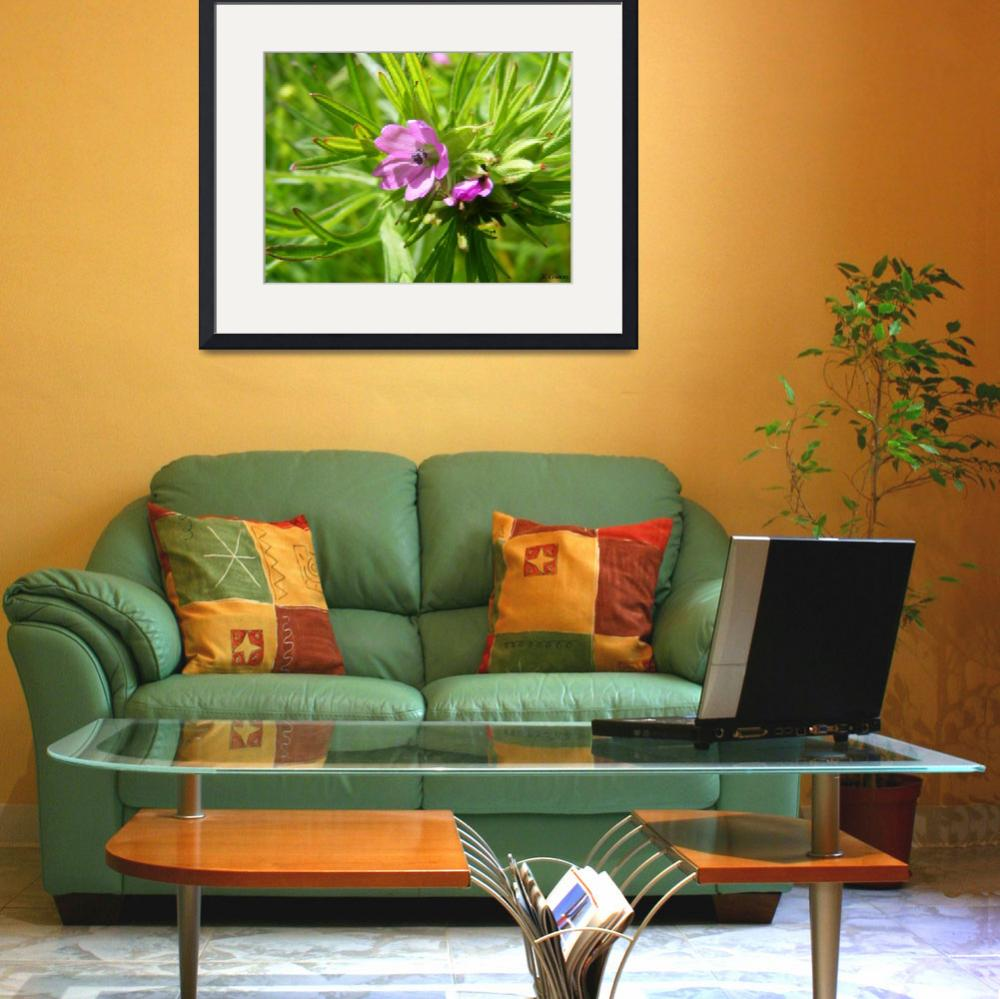 """""""Green and purple flower&quot  (2010) by Joel-LilianC"""