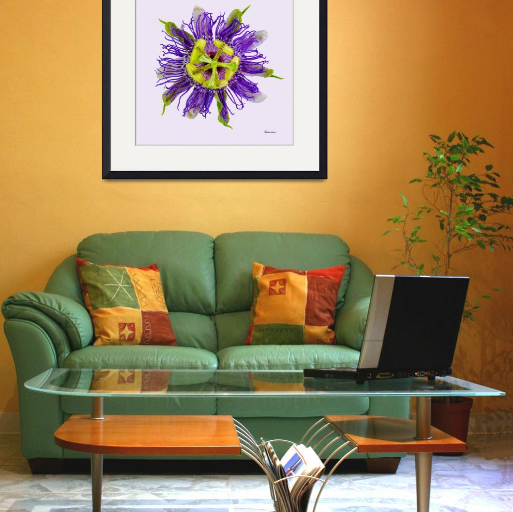 """Yellow Green And Violet Passion Flower 50674v&quot  (2018) by Ricardos"