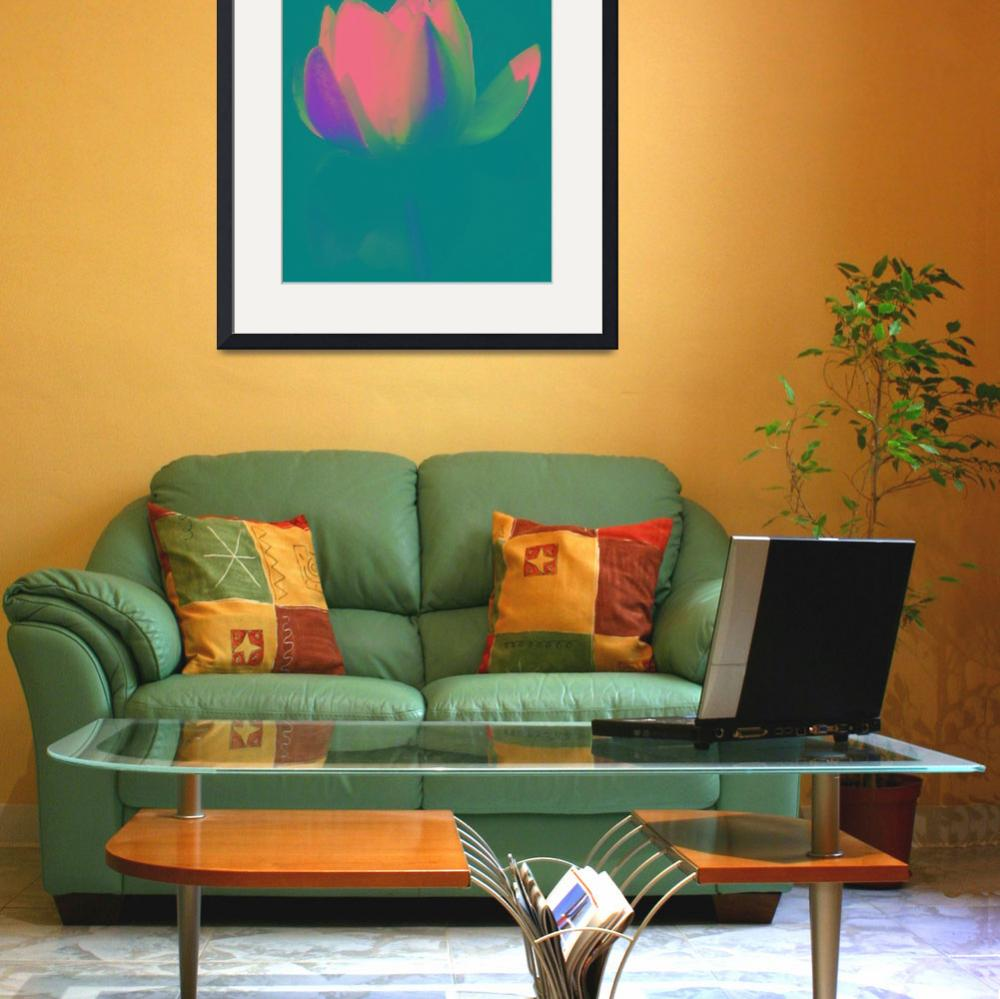 """""""waterlily pink on teal""""  by lizmix"""