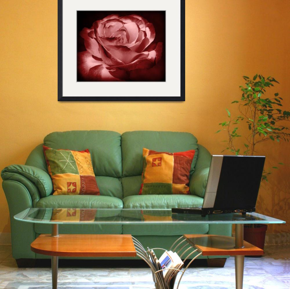 """""""ROSE,red,floral,flowers,single,decor,interior,desi&quot  (2012) by athala"""