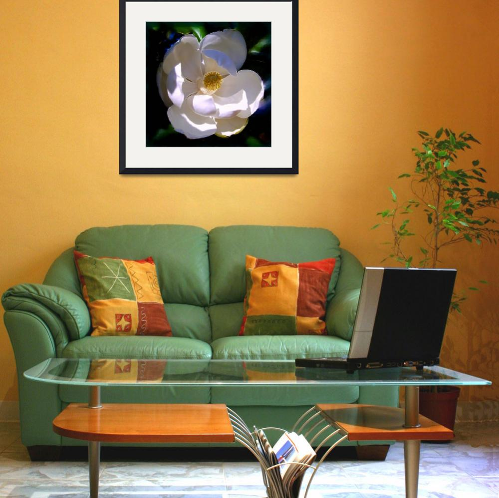 """Magnolia Two&quot  (2008) by Artlife"