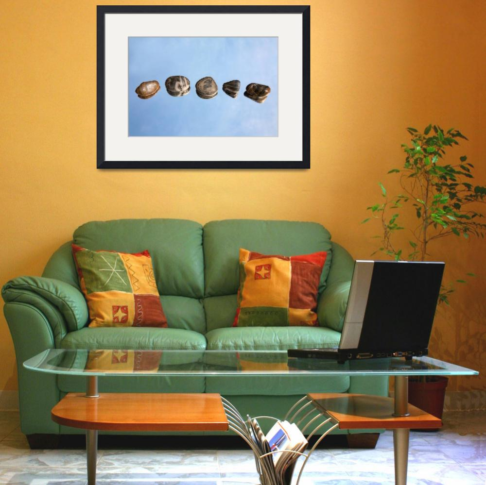 """""""Pebbles and Sky Reflection&quot  (2012) by NatalieKinnear"""