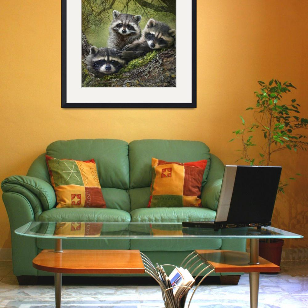 """""""raccoons as art&quot  (2013) by rchristophervest"""