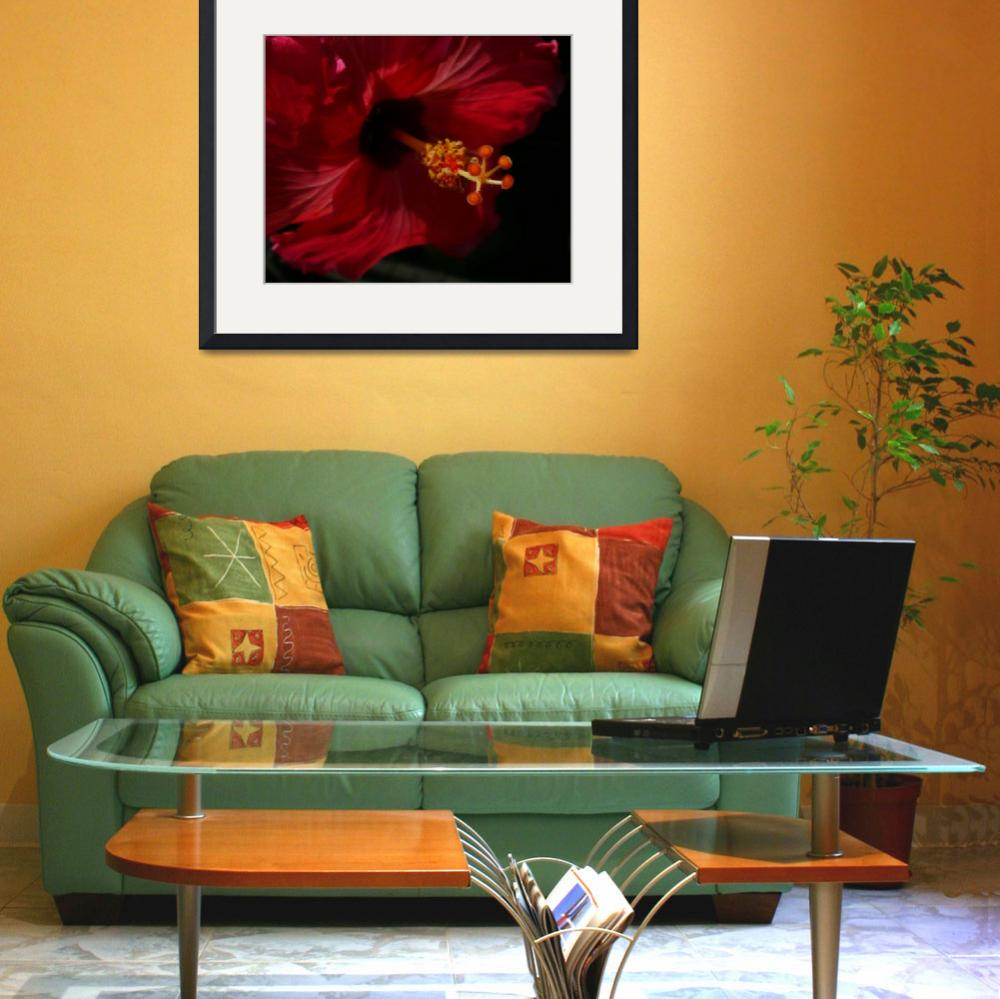 """""""Mysterious Hibiscus&quot  (2009) by Debrene"""