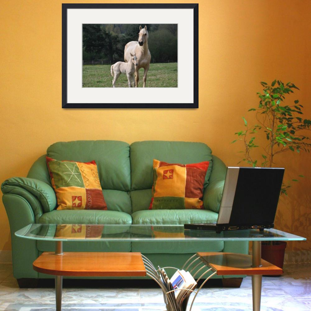 """""""Domestic Horse with Pony""""  (2015) by MarilynsArt"""