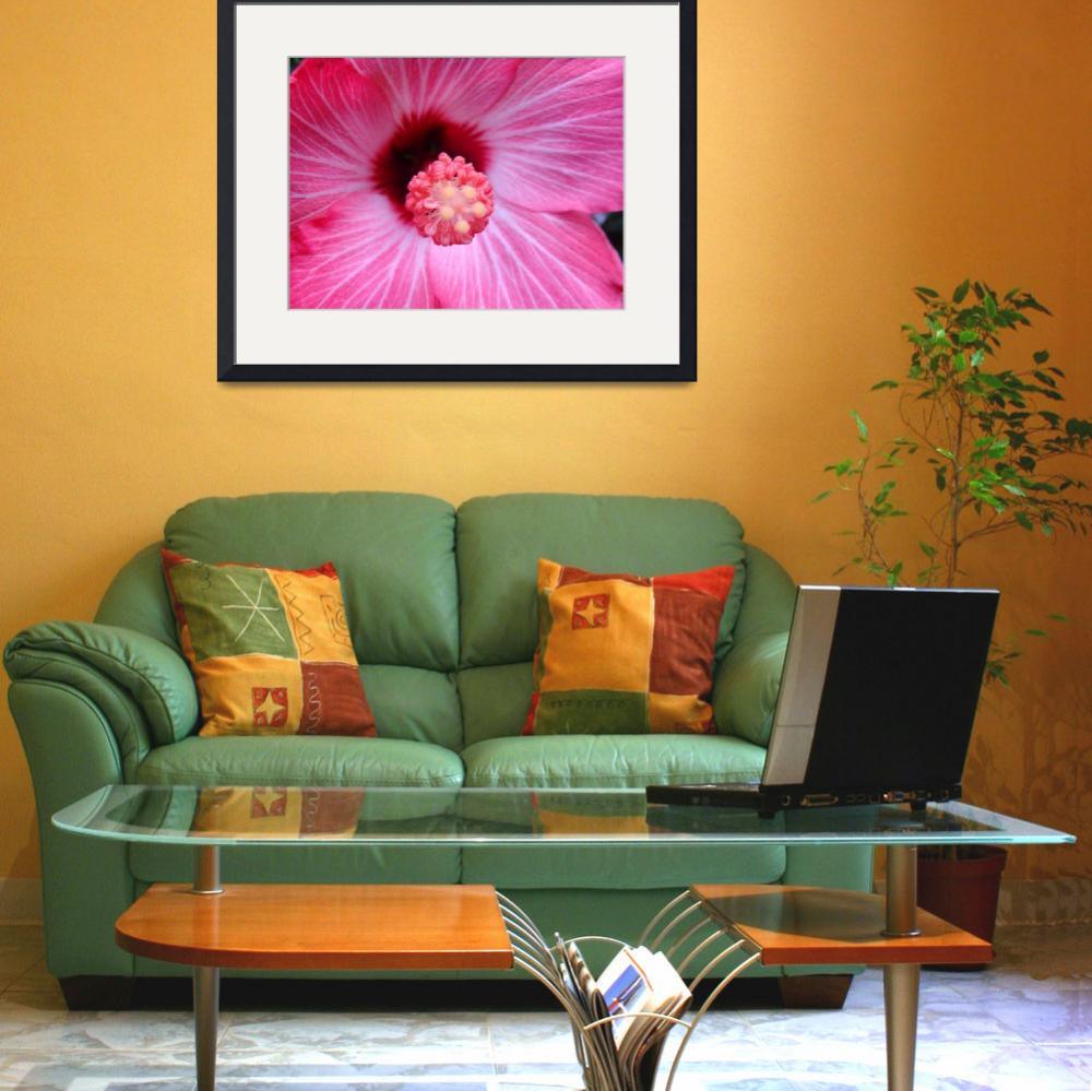 """""""Hot Pink Hibiscus&quot  (2010) by ZiaMia"""