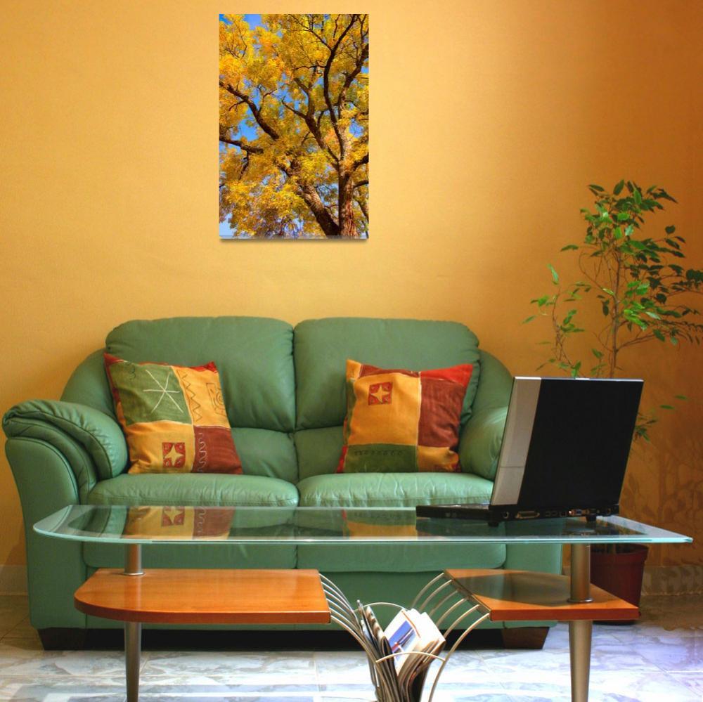 """Crisp Colorful Majestic Autumn Day""  (2010) by lightningman"