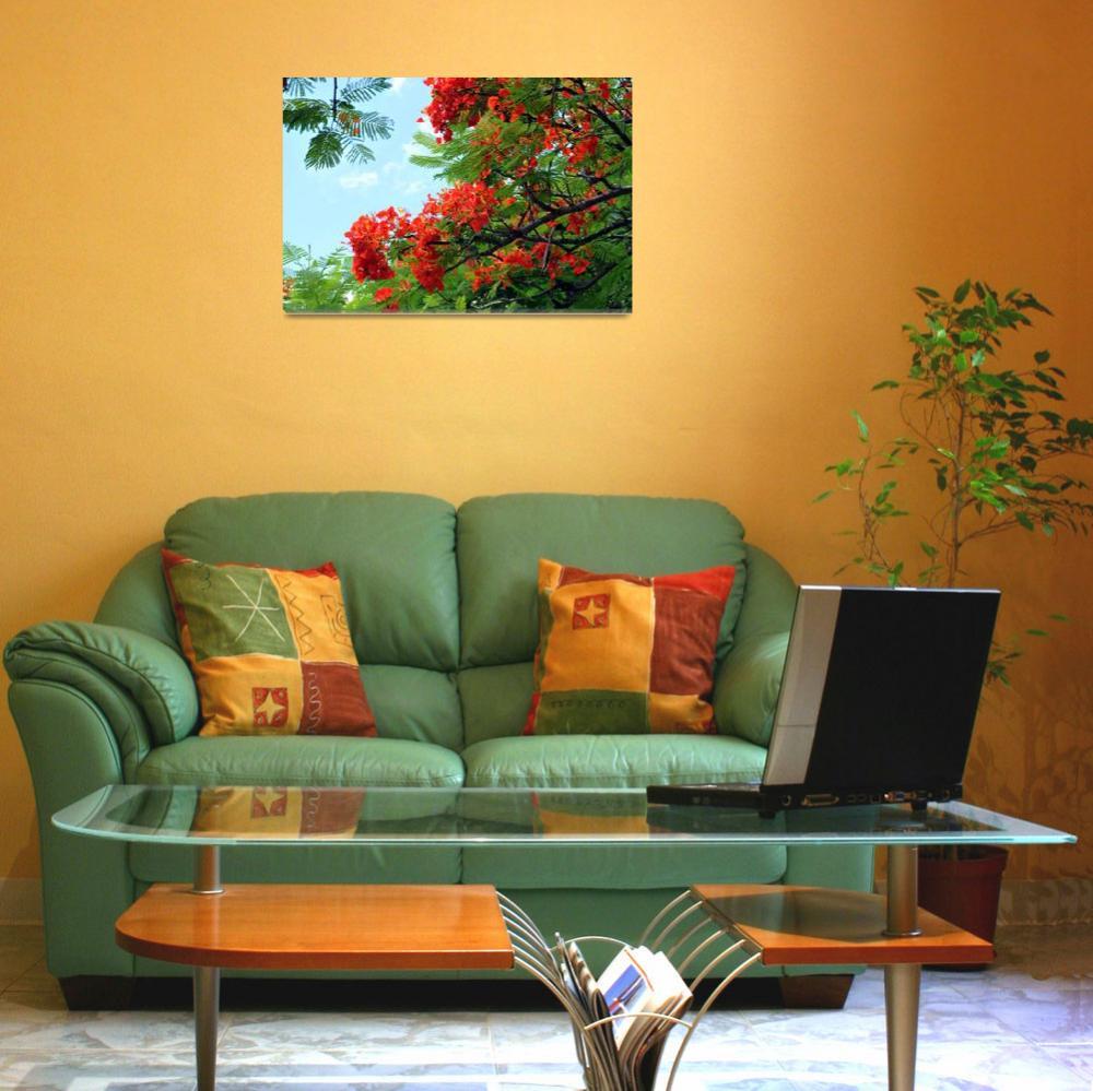 """Hawaiian Royal Poinciana Flowering Tree""  (2009) by LorrieMorrison"