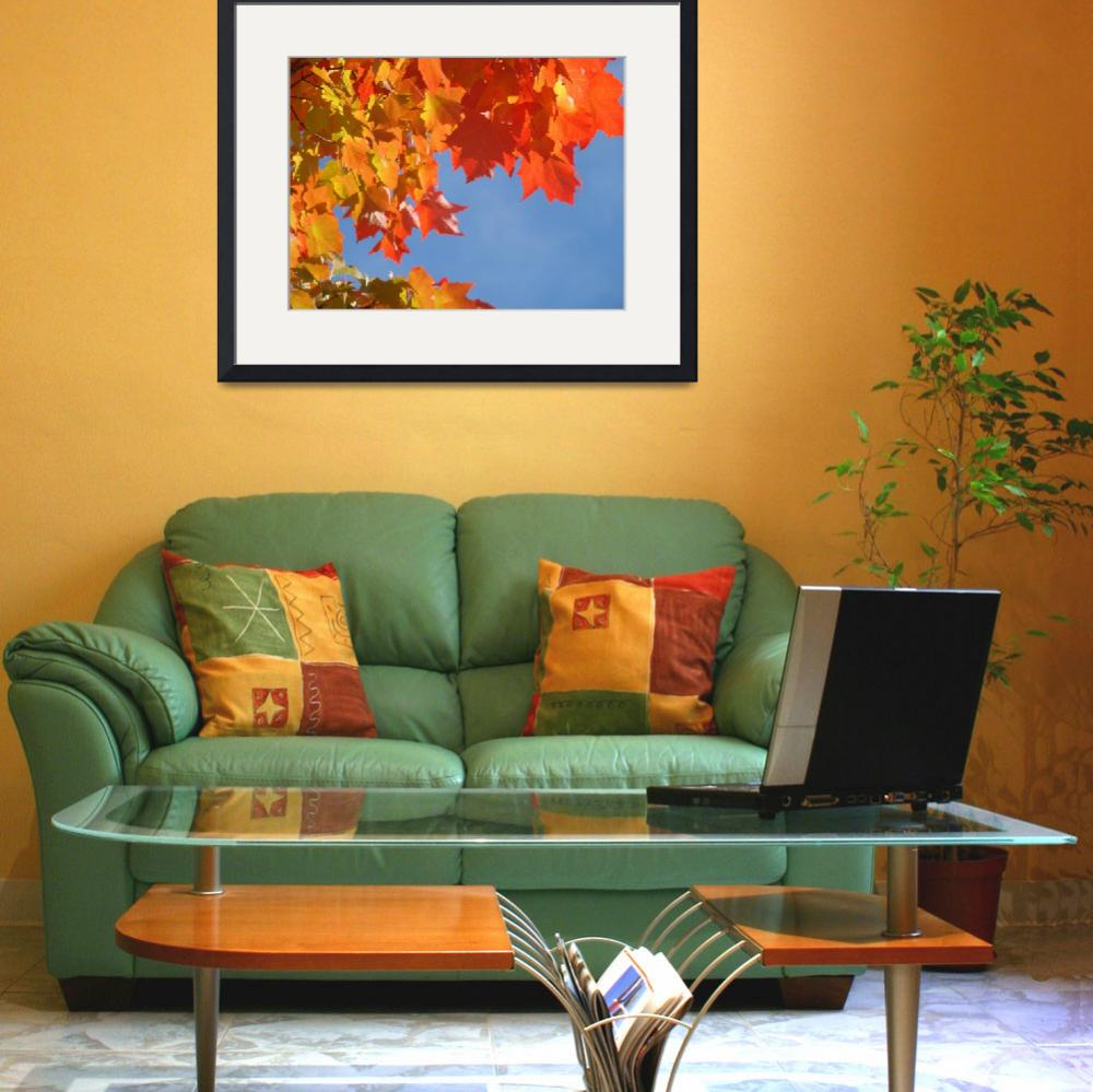 """""""Red Orange Autumn Leaves Fall Blue Sky art prints&quot  (2013) by BasleeTroutman"""