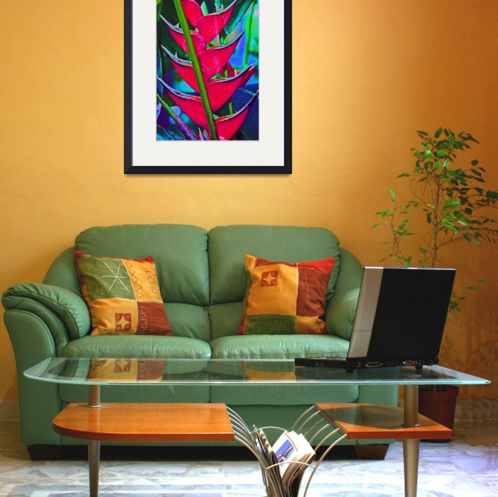 """""""Heliconia Tropical Flower&quot  (2011) by KsWorldArt"""