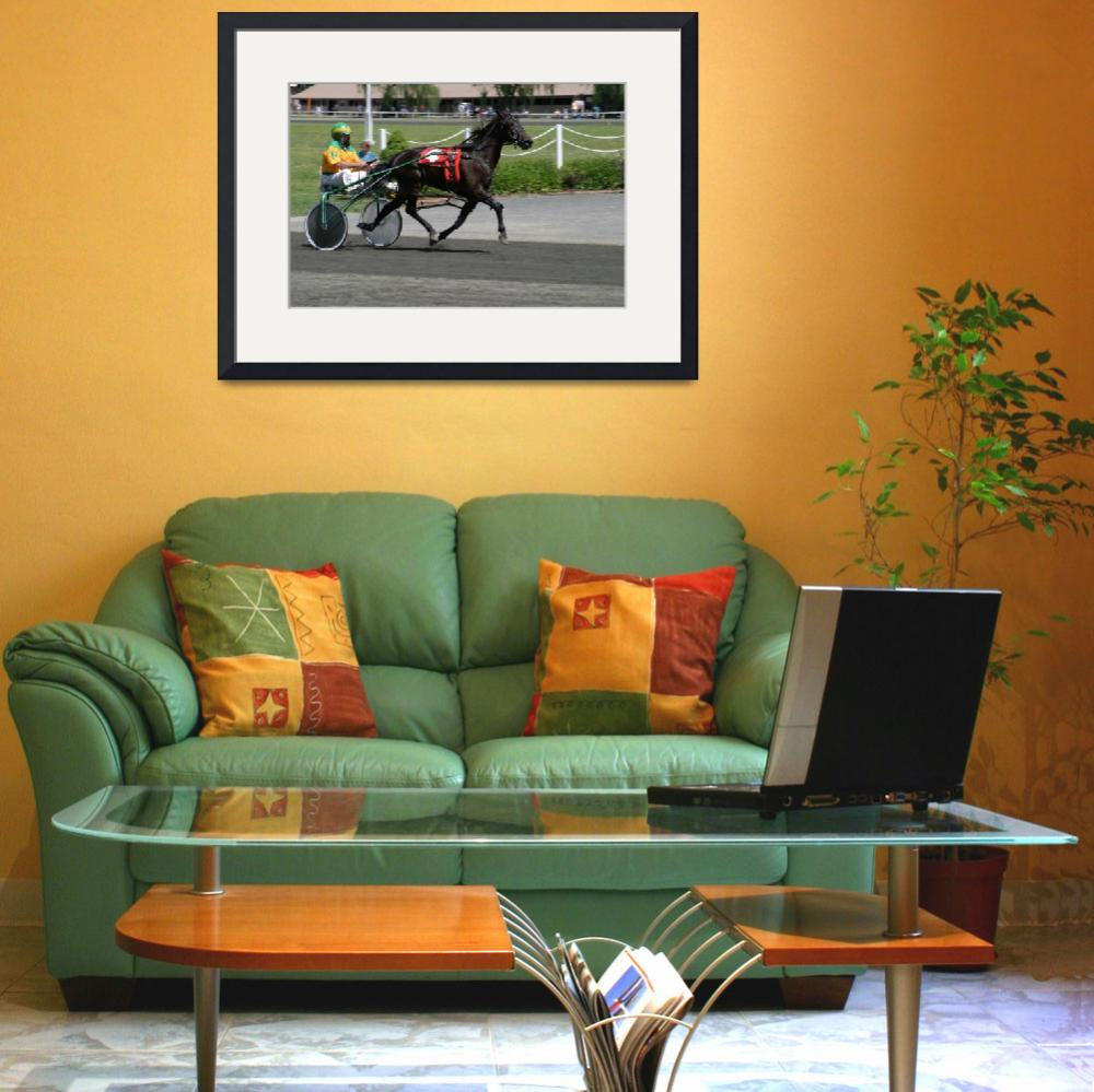 """""""horse racing""""  (2011) by bandit412"""