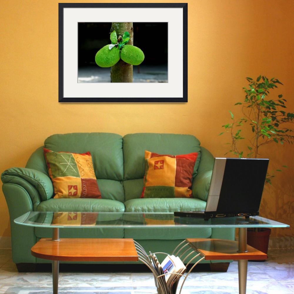 """""""Sexy Green Fruits&quot  (2007) by fberluteau"""