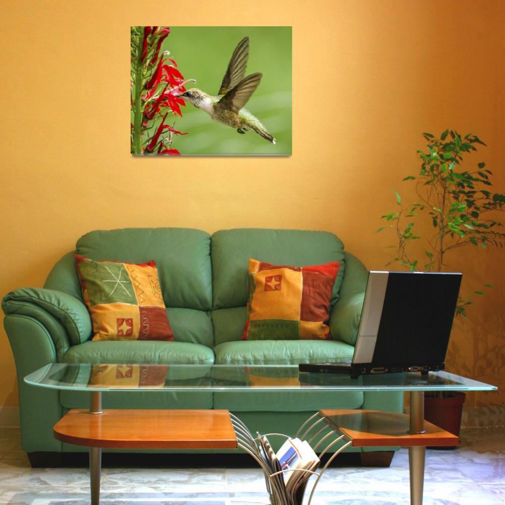 """Hummingbird on Cardinal Flower&quot  (2017) by NatureAsArt"