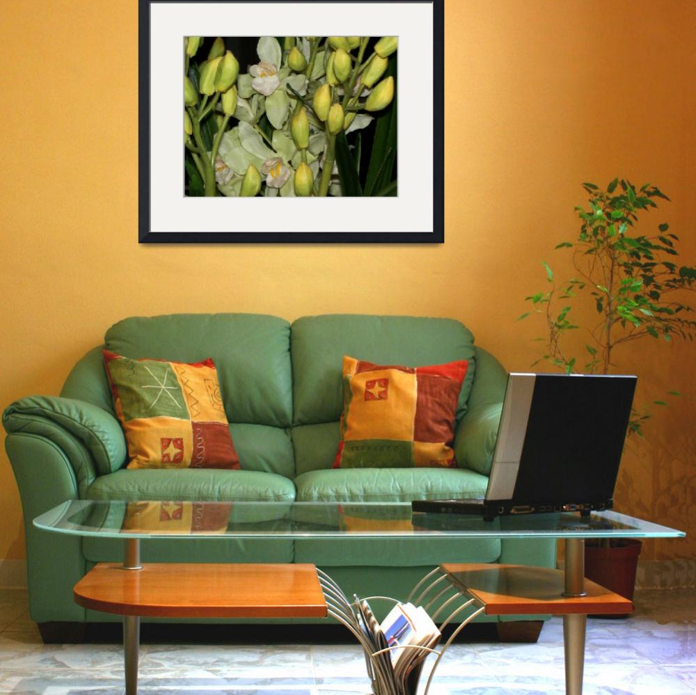 """""""Orchids&quot  (2008) by SherryHolderHunt"""