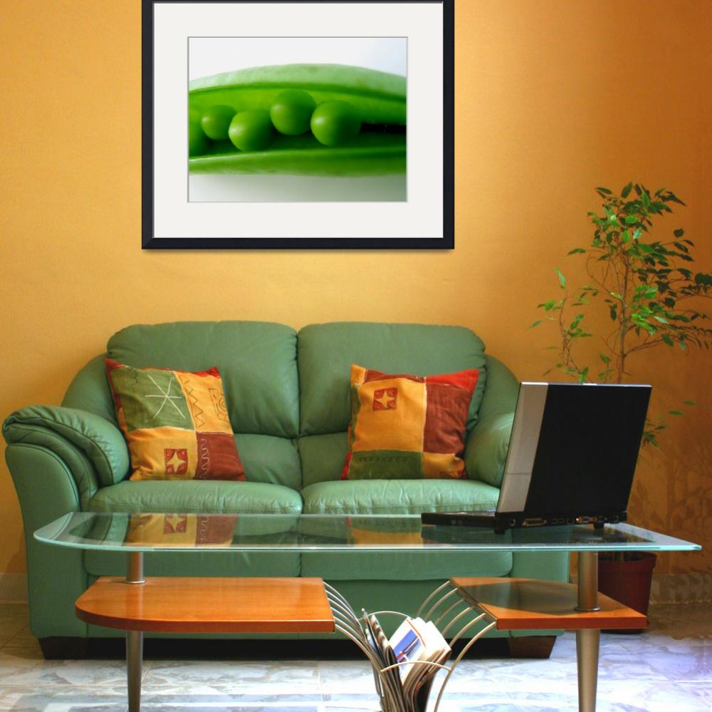 """""""Peas in a Pod&quot  (2008) by steveallatphoto"""