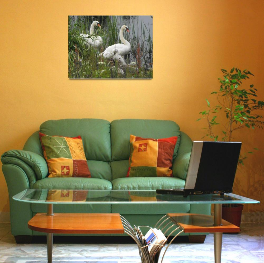 """""""Mute Swan Family&quot  (2008) by mikes-space"""