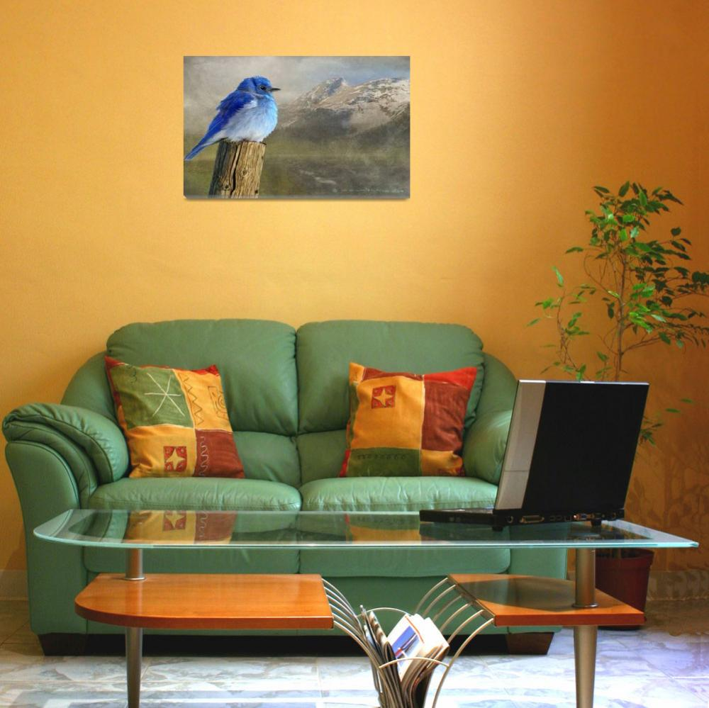 """""""early spring chill / mountain bluebird&quot  (2010) by rchristophervest"""