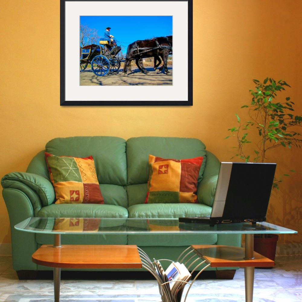 """""""Colonia Williamsburg VA Carriage 5798&quot  (2008) by JTPatterson"""
