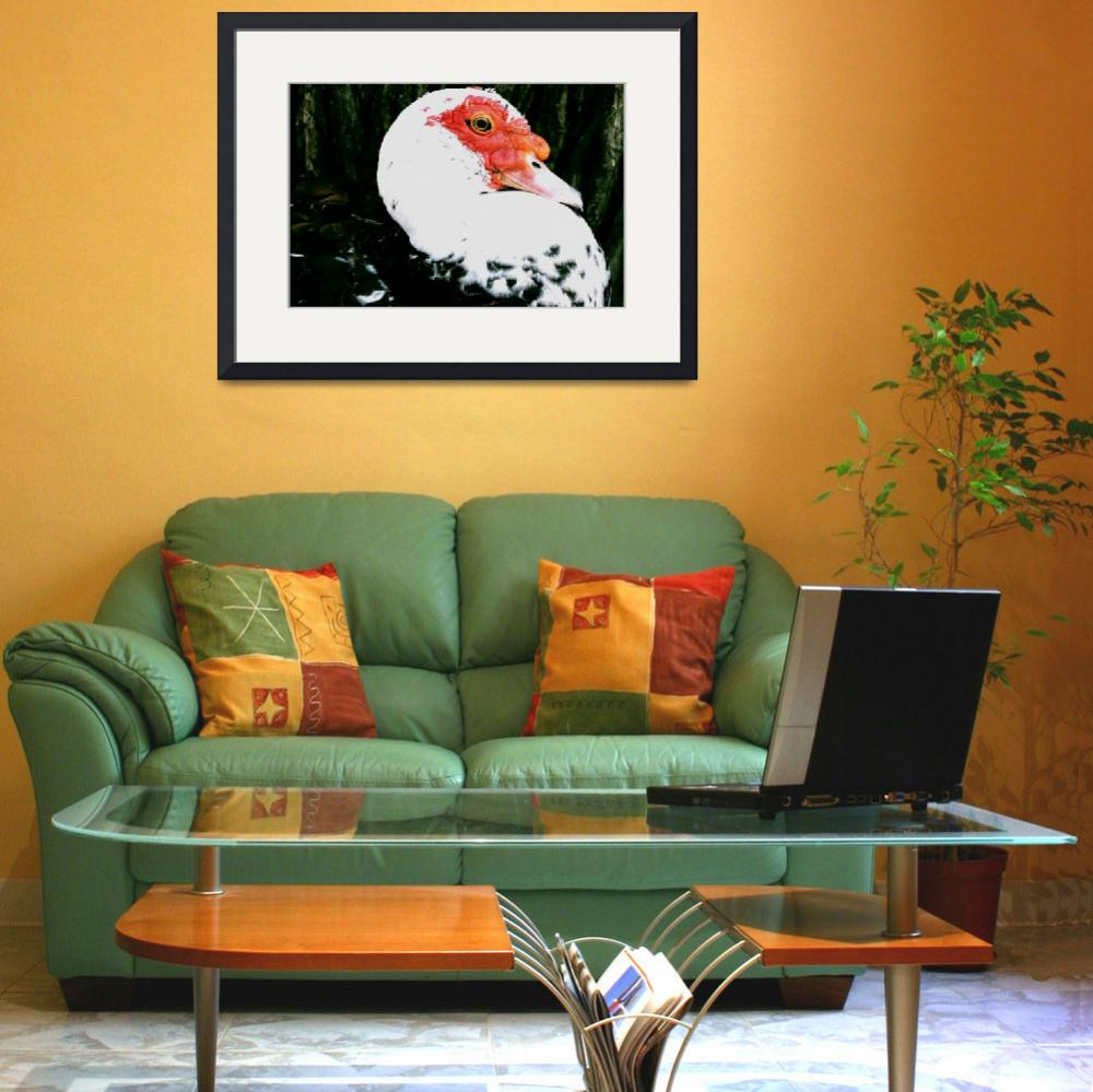 """""""Ugly Duckling&quot  (2008) by rayjacque"""