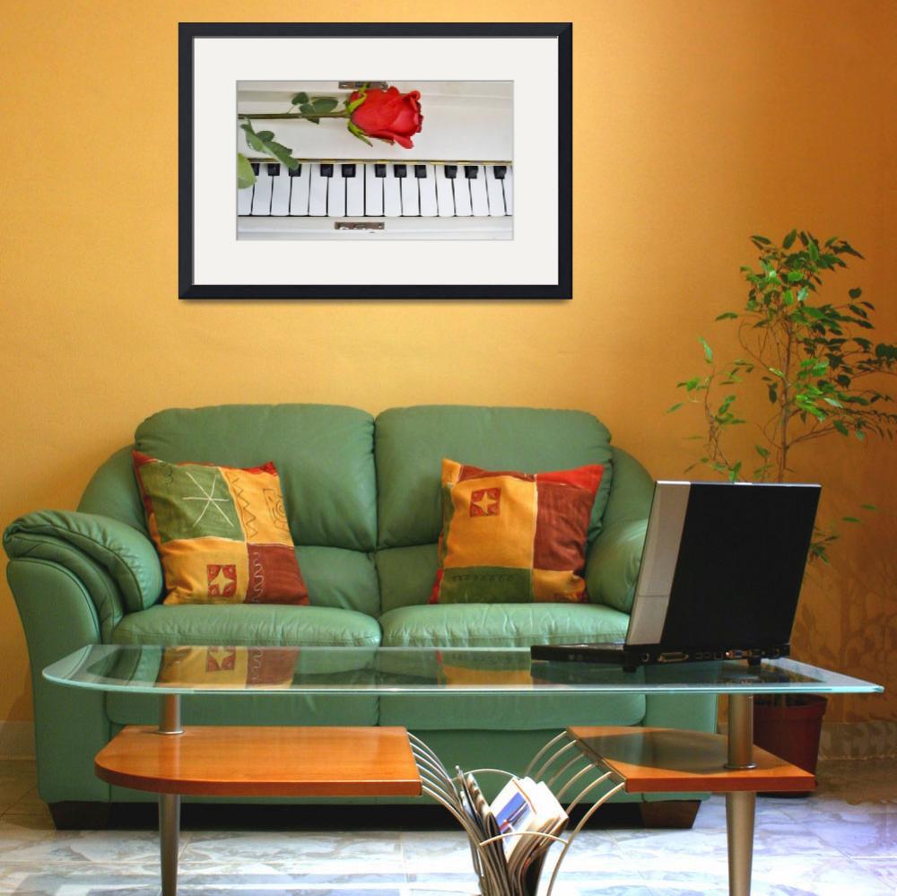 """""""White Piano and Red Rose&quot  (2012) by amandacovey"""