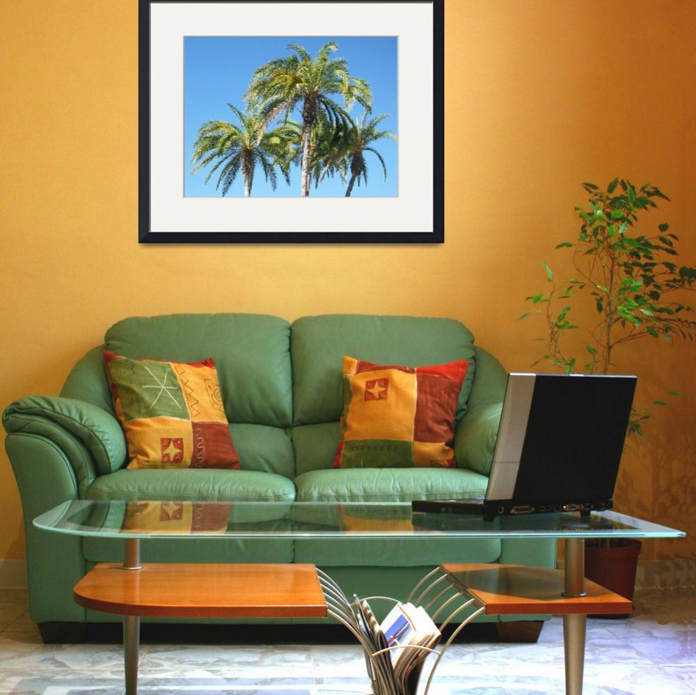 """Palms""  (2008) by WaterstoneArt"