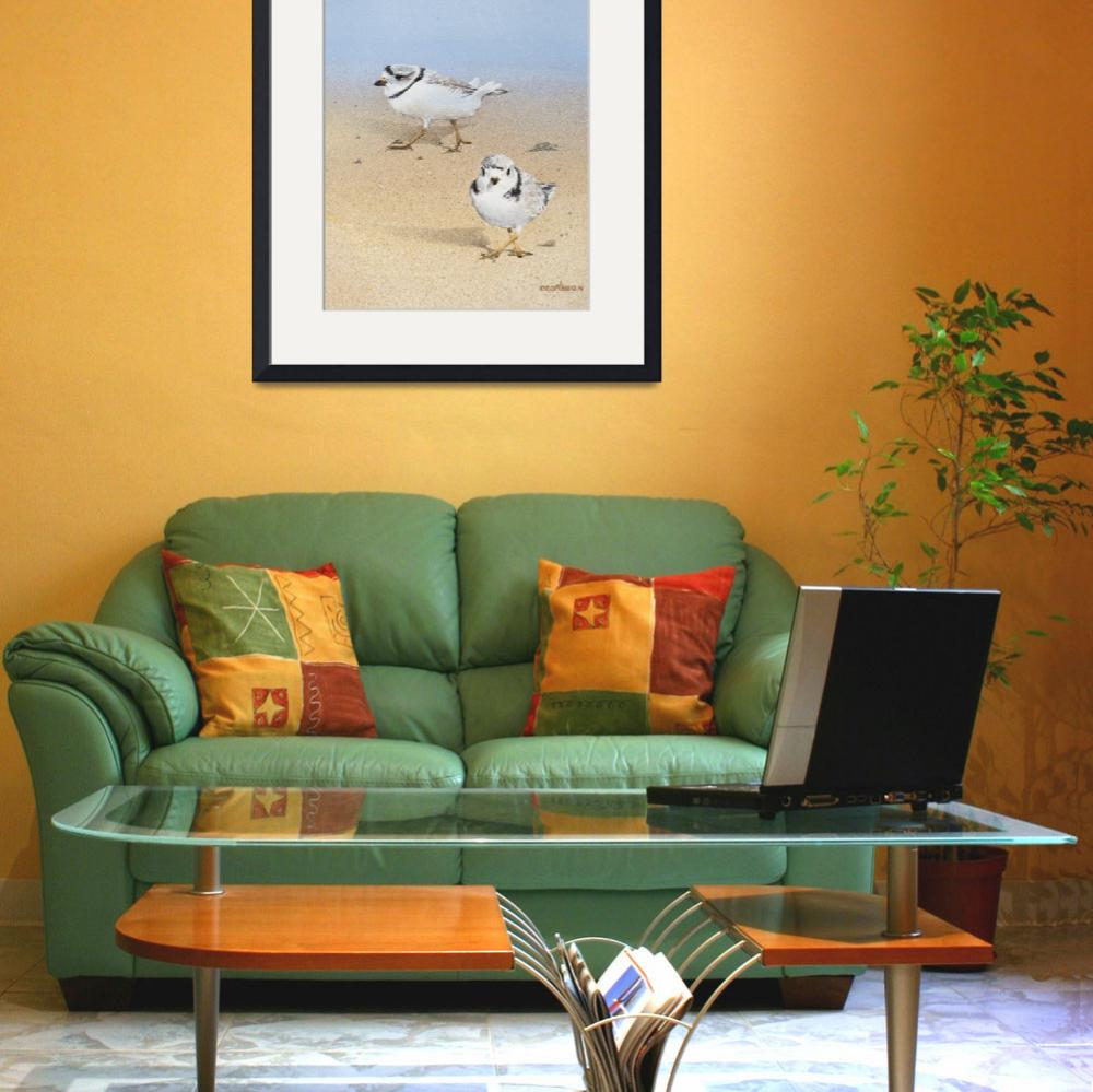 """""""Piping Plovers&quot  (2014) by Ezartesa"""