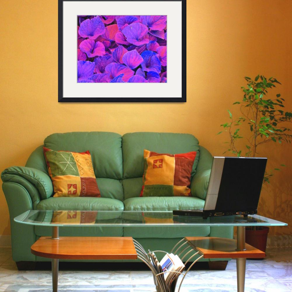 """""""Color Abstraction One&quot  (2012) by SVPhotoArt"""