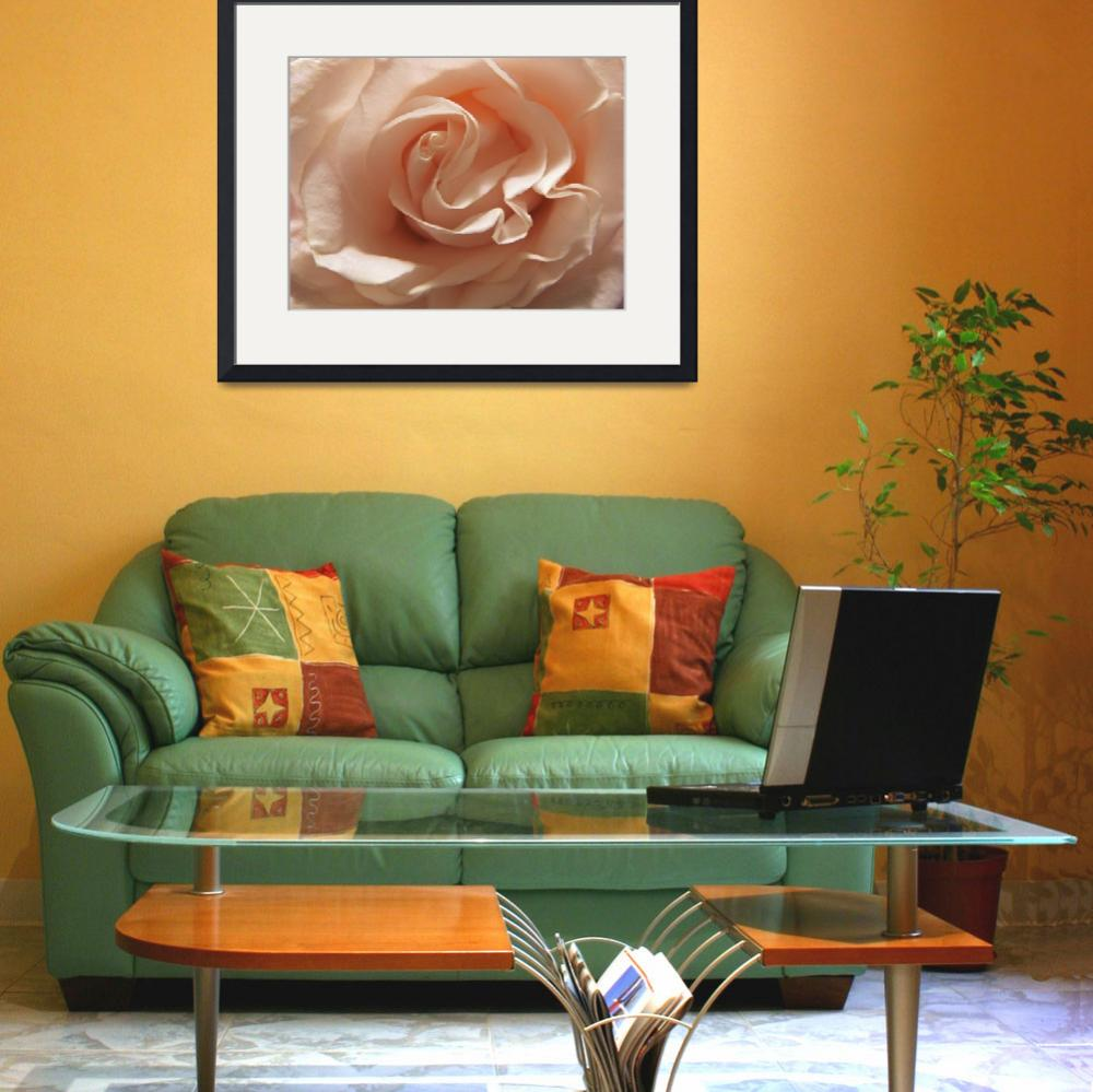 """""""Focused on Rose""""  (2012) by LeftHandPrints"""