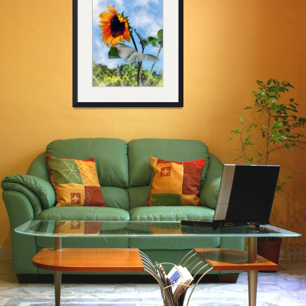 """Sunflower Against the Sky&quot  (2012) by susansartgallery"
