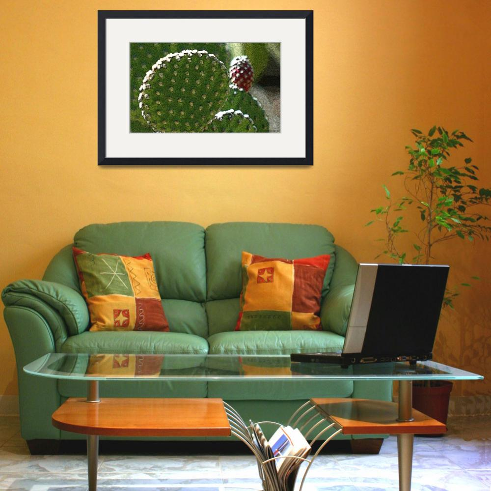"""""""Prickly Pear""""  (2010) by mather_boehm_images"""