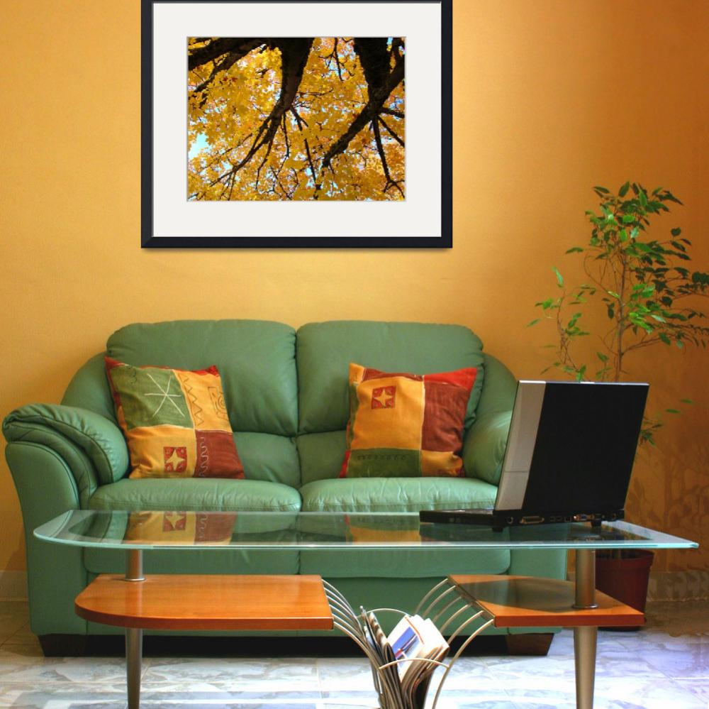 """Yellow Fall Art prints Autumn Trees Botanical&quot  (2011) by BasleeTroutman"