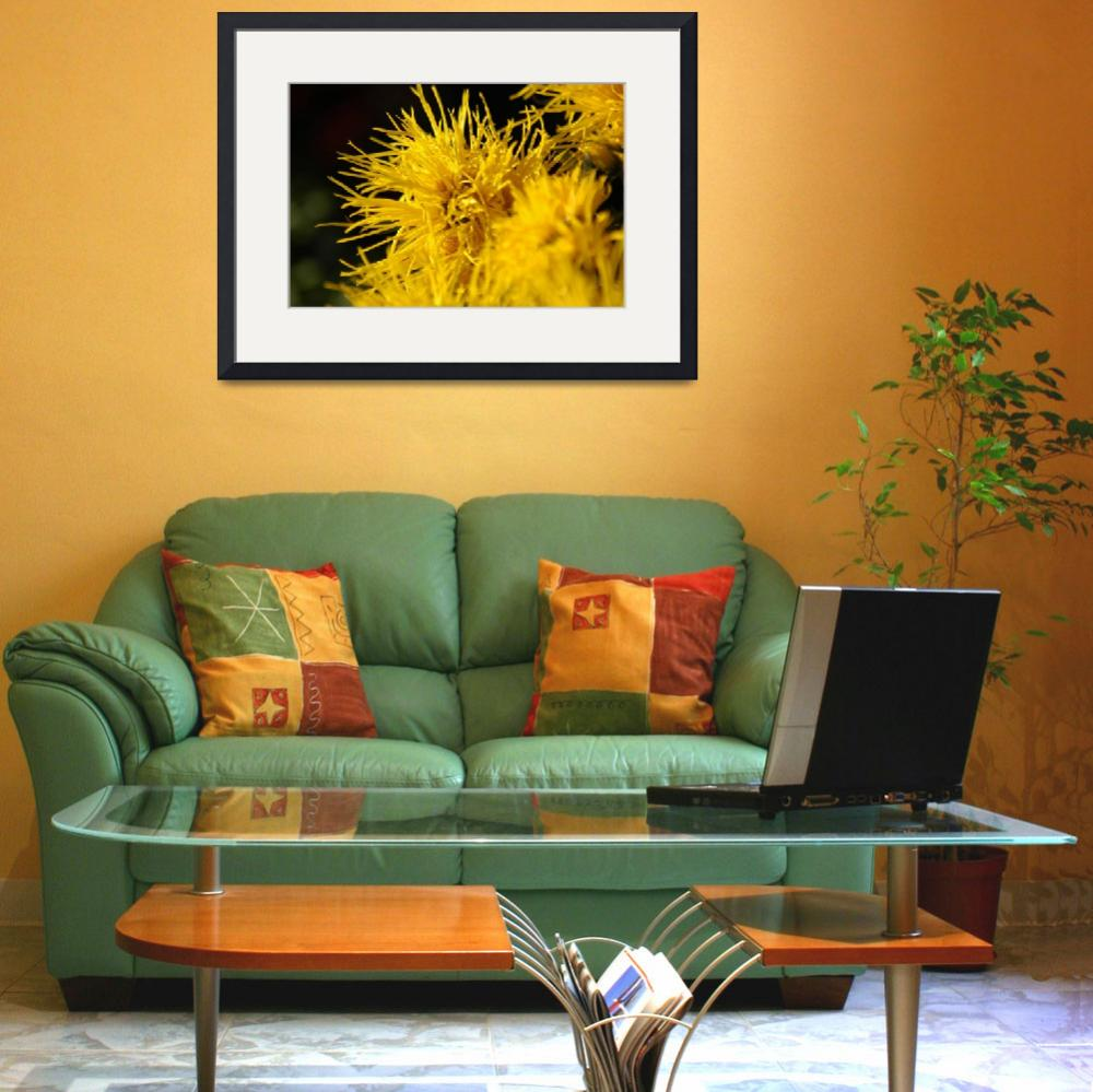 """""""Yellow Flowers at Sunset&quot  by dejoyaphotography"""