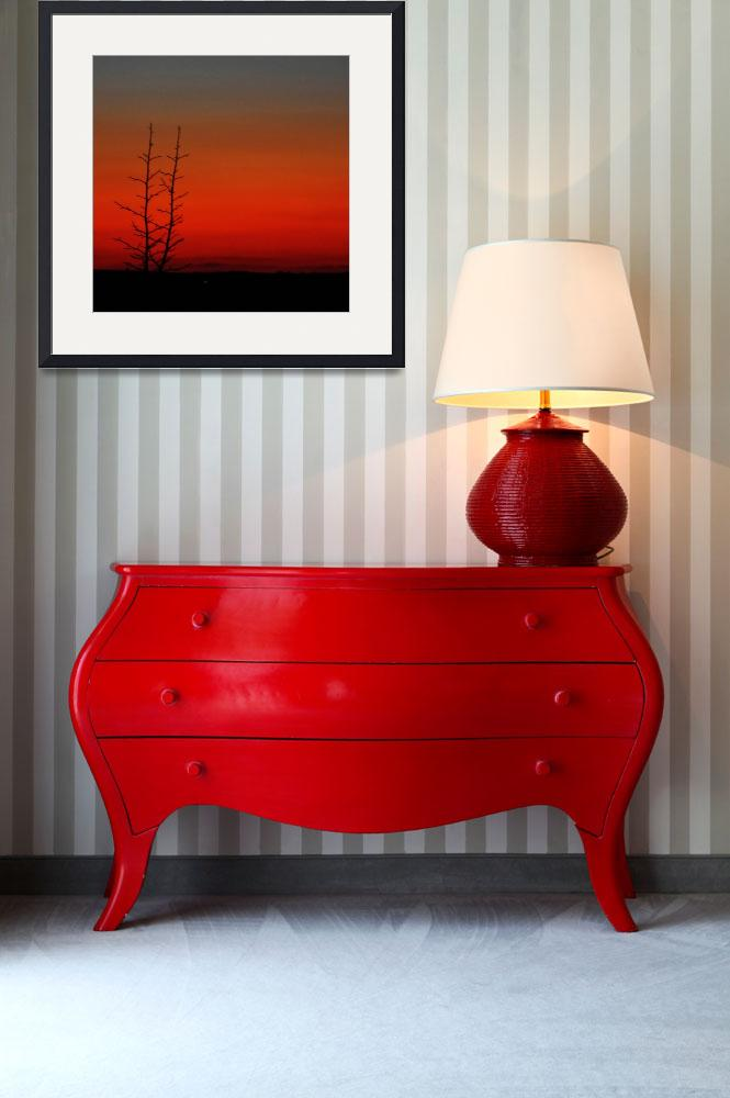 """""""Red Sunset&quot  (2008) by ldfranklin"""
