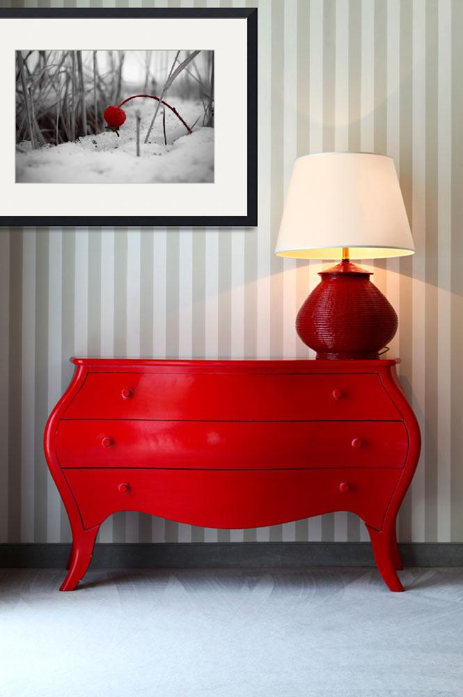 """""""Pop Of Red&quot  by ChristyPatino"""