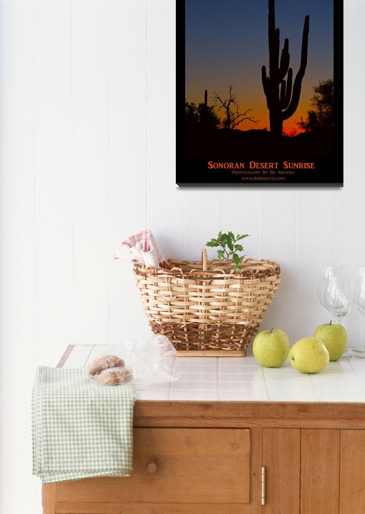 """Sonoran Desert Sunrise Poster Print&quot  (2014) by lightningman"