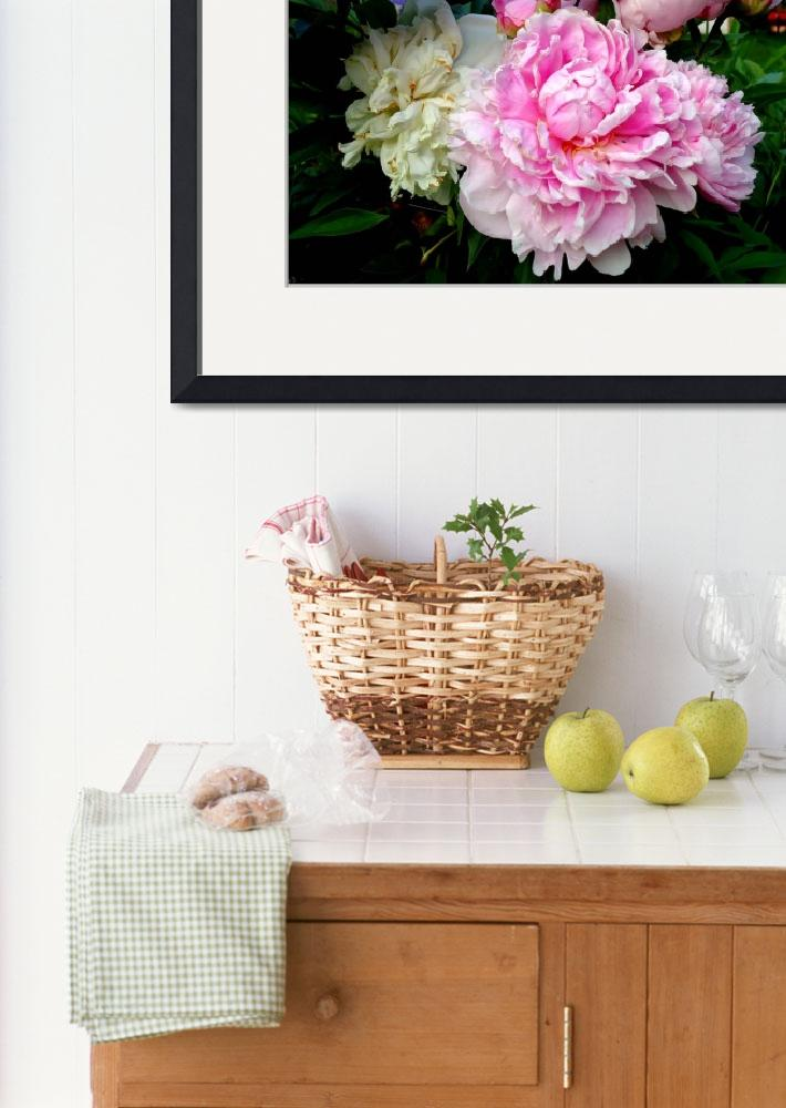 """""""Pink and White Peonies""""  by FlyingSwanStudio"""