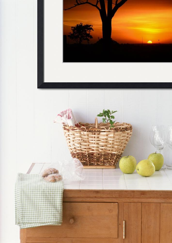 """Sunset Photo Framed Photo""  by LifeHack"