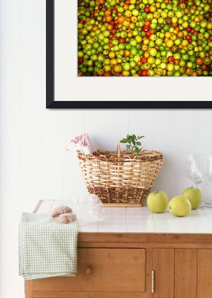 """Fruit Display""  (2008) by OneMansPerspectives"