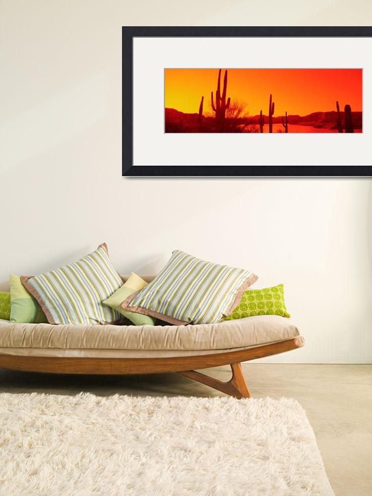 """""""Silhouette of Saguaro cacti at sunrise&quot  by Panoramic_Images"""