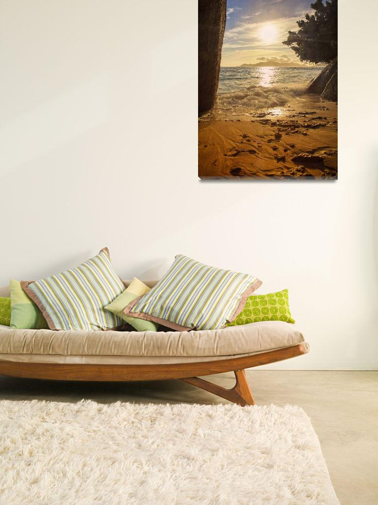 """""""beach of nature""""  (2010) by photoplace"""