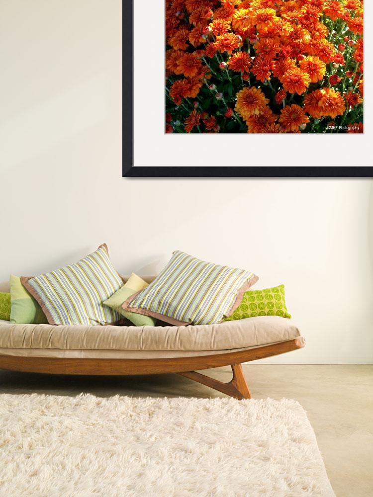 """""""Beautiful Mums&quot  (2010) by MHP-Photography"""