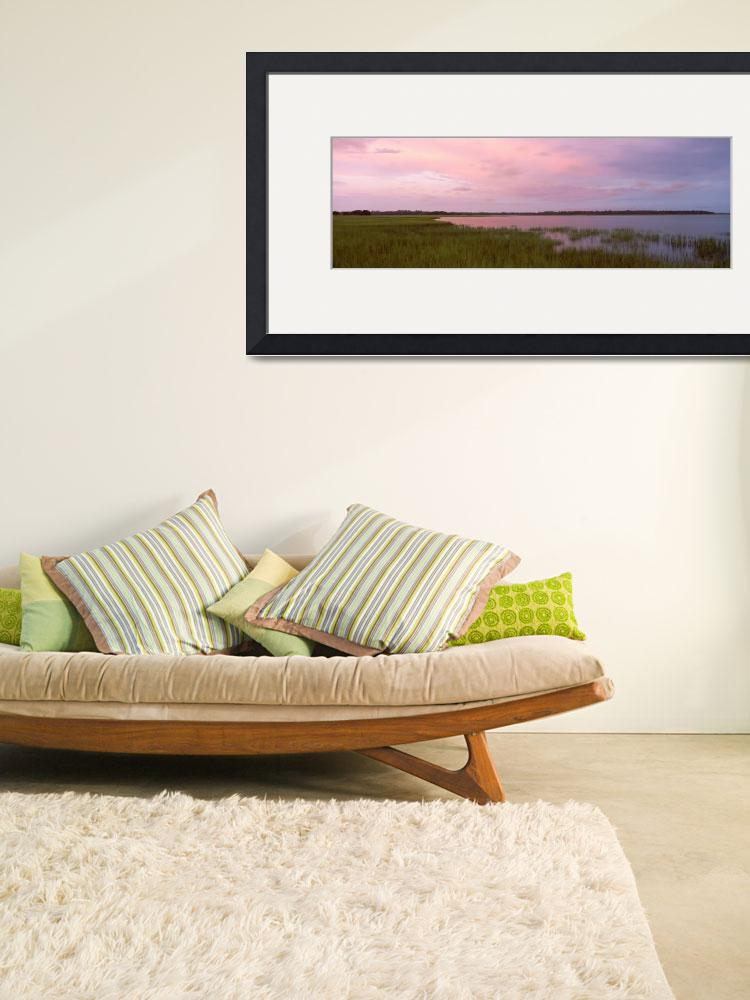 """""""Grass on the beach&quot  by Panoramic_Images"""
